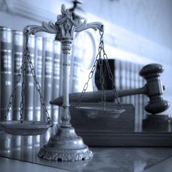 LLM legal scales