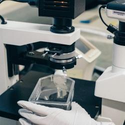 Top 10 Microbiology Masters UK & Europe   Blog   Postgrad com